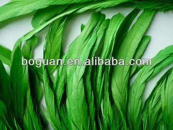 hot sale cheap green rooster feathers