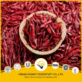 Red and spicy chilli pods factory prices and premium grade
