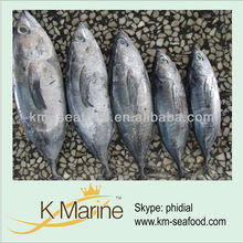 China Wholesale Frozen Seafood