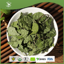 Wild Natural Flavored Mint Leaves Tea