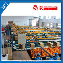 Full-automatic photoelectrical fruit grading machine