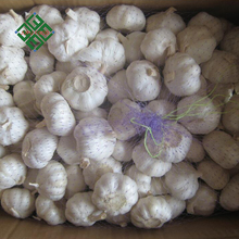 2017 natural pure white garlic for export