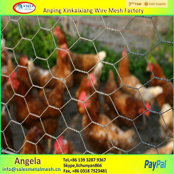 Anping Factory cheap chicken wire / rabbit wire mesh / galvanized hexagonal wire mesh