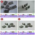 Supply all kinds specifications of tungsten carbide tips