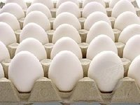 white table eggs