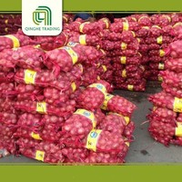 cheap onion wholesale market  onion price for sri lanka with low price