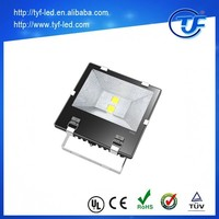 China IP65 10-300w Outdoor SMD COB LED Projector