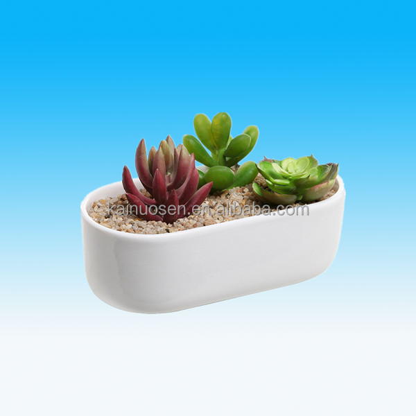 Wholesale Indoor Oval White Succulent Pot Ceramic Planter