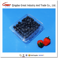Clear Disposable Food Grade Pet Plastic Fruit Blueberry Container