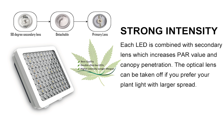 Full spectrum ledgrowlights