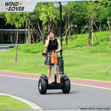 Two wheels adult charilot scooter Wind-rover V5+ electrical scooter chinese electric bike