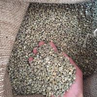 Washed or Sun Dried Unroasted Raw Chinese Origin Yunnan Baoshan Arabica Green Coffee Beans Screen 12 to 15 AB Grade