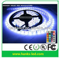 DC12V/24V Waterproof 5050SMD 60led/m RGB flexible led strip light
