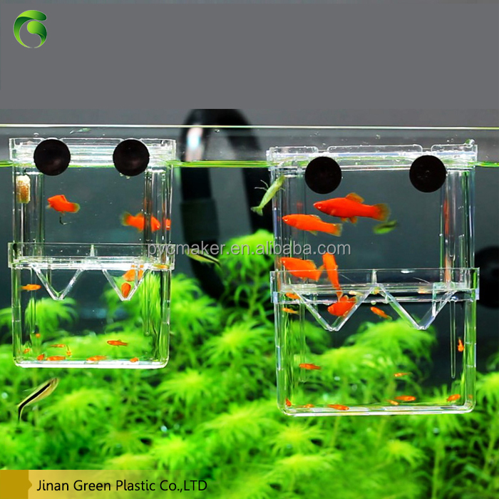 Green 2016 eco Fish tank large clear plastic sheets <strong>acrylic</strong>
