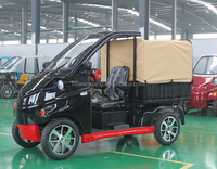 New Low Speed Cheap Mini Electric Car/Trucks