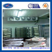 fish cold room and freezer cold storage negative frozen freezer