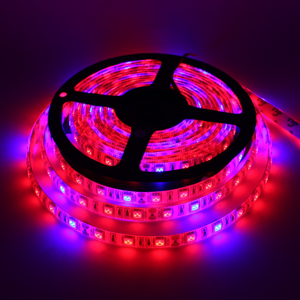 4m 60smd 5050 single color remote controller Greenhouse LED led tape light