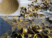 Kombu seaweed ,kelp /sea kale powder for feed, poultry feed processing plant