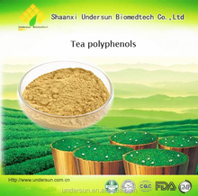 Best price Antibacterial tiviral Tea Saponin 90% powder by manufacture