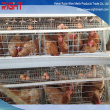 3-layer, 4-layer battery farming egg chicken cage / automatic poultry cages / laying hen coops for sale / broiler chicken house