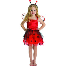 Kids Fancy Dress ladybird Costume Photo