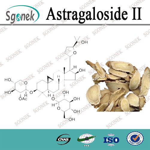 High Purity Astragaloside II 98% HPLC Powder from astragalus root