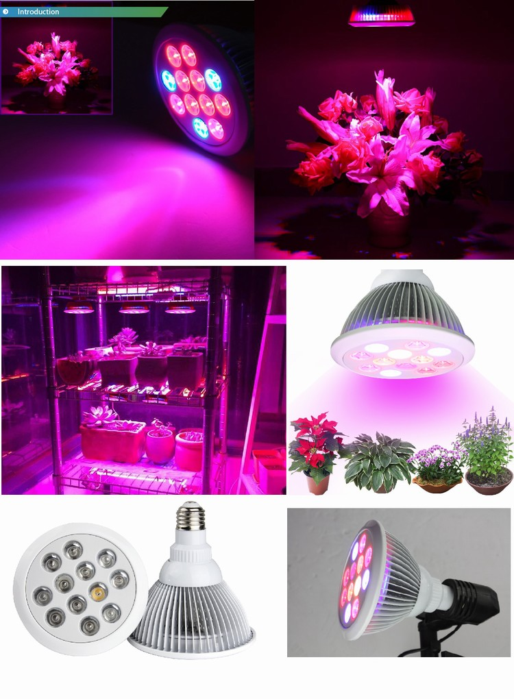 High quality easy to set up and use customized spectrum 36w LED Grow Light for indoor plants