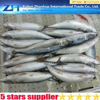 200 300g Sea Frozen Mackerel Fish