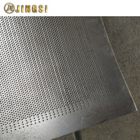 Small Hole Stainless Steel Perforated Metal Sheet Protection Screen