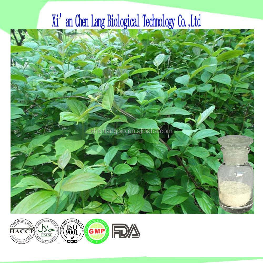 Pure Nature Tripterygium Wilfordii Hook.F. Plant Extract Of ISO Tripterygium Wilfordii Extract