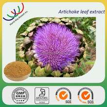 Bulk stock NATURAL artichoke leaf plant extract,lowering cholesterol 6% cynarin,factory supply artichoke leaf extract powder