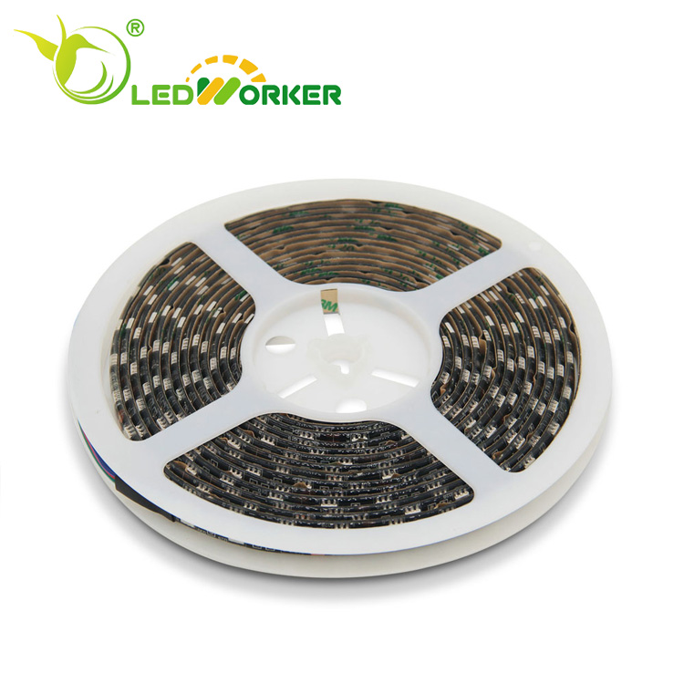 Motion sensor sensitive led grow light led strip 200 led m 5050 vs 3528 ip40 with competitive price in led market