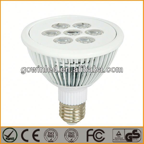 2013 Best selling high quality LED PAR30 Lamp 6W/par 56 rgb led bulbs for swimming pool