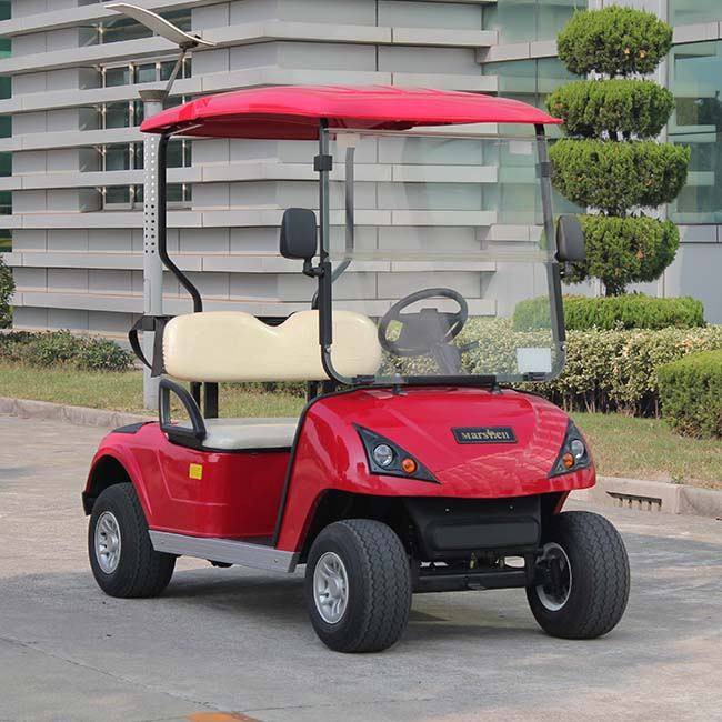 CE certificated China manufacturer 2 person electric car for golf lesson DG-C2