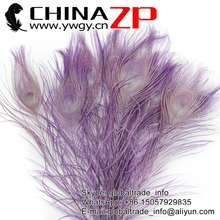 CHINAZP Factory Wholesale Hobby Lobby Peacock Colored Lavender Tails Peacock Feathers