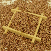 Chinese new crop bulk sell hulled roasted buckwheat kernels with low price