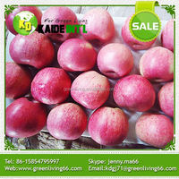 Fresh Red Star Apple On Sale