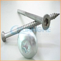 Chuanghe sales torx t30 concrete screw/ window frame screw
