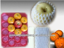 29x39cm Apple Peach Tomato Kiwi Disposable Plastic Fruit Packaging Trays
