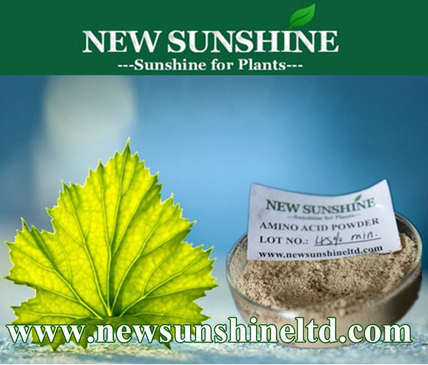 Organic fertilizer Amino acid Plant source