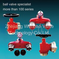 SS 65mm Stainless Steel Fire Hydrant Valve china supplier