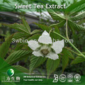 Natural sweetner 20%~70% rubusoside sweet tea extract producer