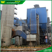 Safety Value 17ton CFB Coal Power Plant Boiler