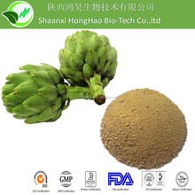 Liver Protection Artichoke Extract / Artichoke for Cholesterol and dietary supplement