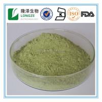 100% Natural Barley Grass Juice Hordeum vulgare Extract Powder with Chlorophyll