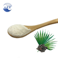 Supercritical CO2 Extraction Fatty Acid Saw Palmetto Extract