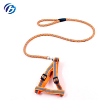 2018 Newest Design Orange Color Pet Leash Nylon Dog Leash And Harness For Small Dogs