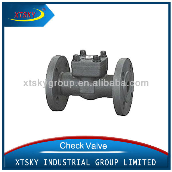 xtsky Forged Steel Flange Check Valve
