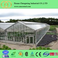 Good price commercial Low Cost glass used hydroponic greenhouses