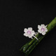925 Silver Sakura wholesale Clip On Earrings